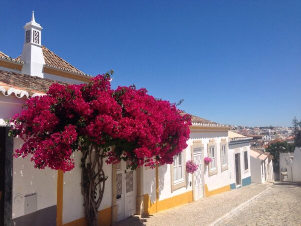 Colorful tipical houses in Tavira
