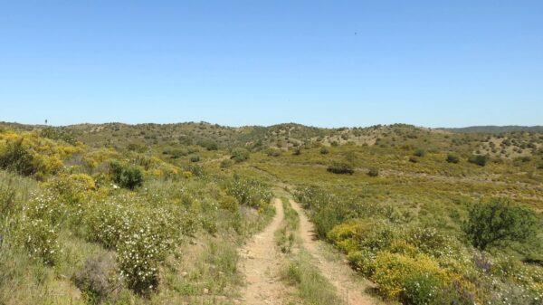 Hike along Guadiana Hills
